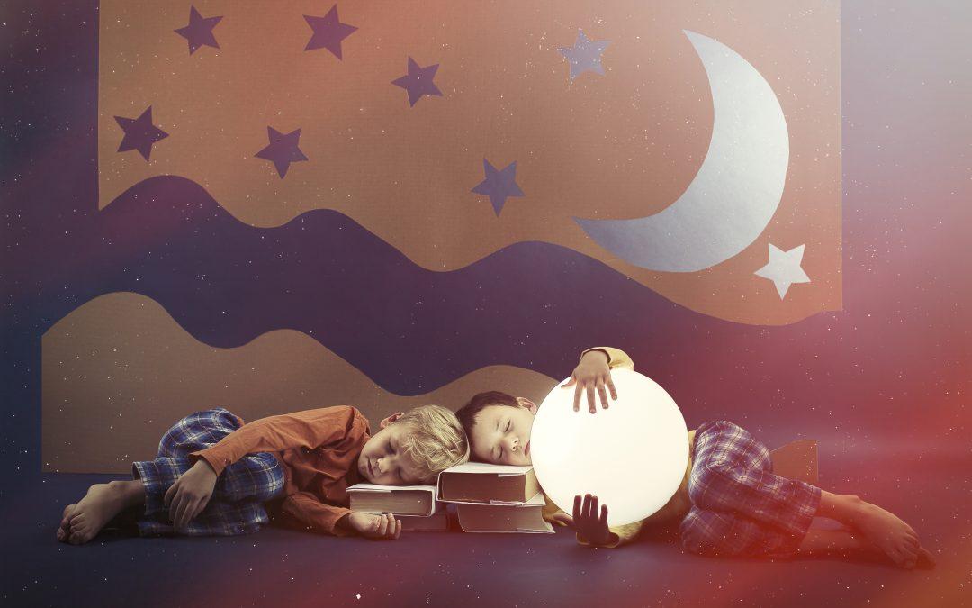 Funktion des Schlafes